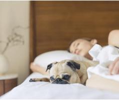 Noite mal dormida e as consequências prejudiciais